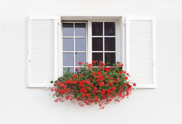 Planujesz kupno nowych okien? Poznaj wady i zalety okien różnego typu!